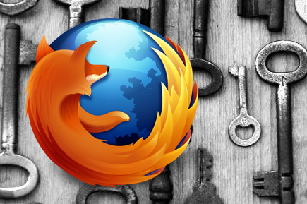 See the password in firefox